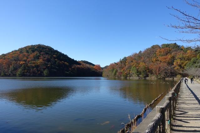 takaragaike lake (do you see the huge orange fish?!)