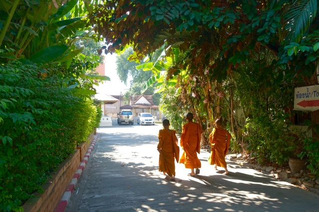 monks in training