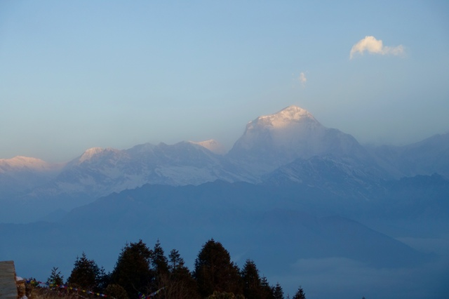 dhaulagiri - good morning, 7th highest mountain on earth
