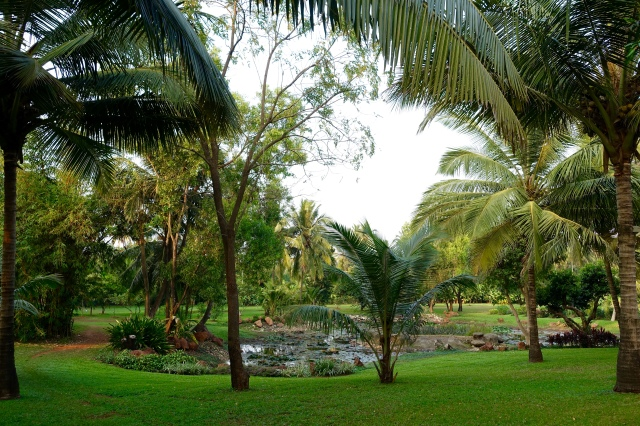 hyatt grounds