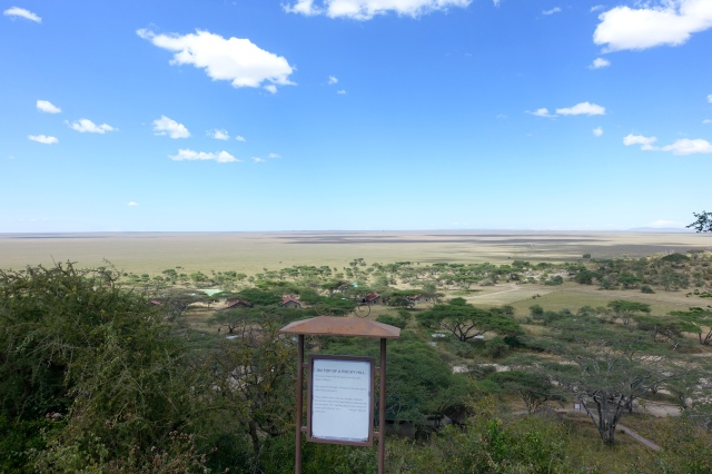 view of serengeti