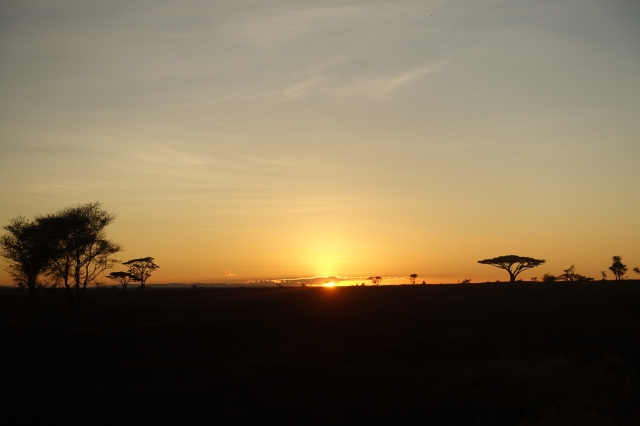 beautiful sunrise over the Serengeti