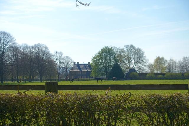 my farm:)