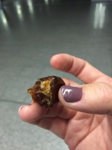 date and brazil nut just-because gift from family as we came out of the terminal